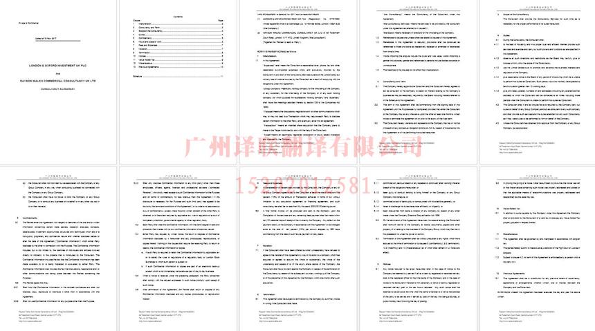 广州译联翻译文件资料翻译案例.jpg